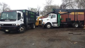 BJS Tree Service Trucks