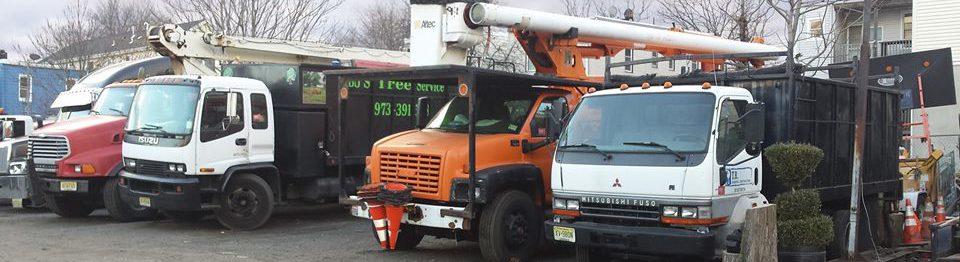 BJS Tree Service LLC